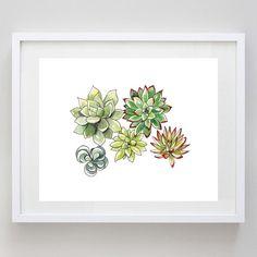 Succulents Print of Original Watercolor Painting by BeWildandFree, $12.00