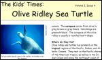 front page of Kids' Times for Olive Ridley Sea Turtle
