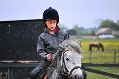horses 02 by RingtonePrince, via Flickr