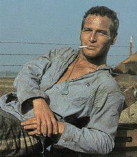 Paul Newman - sometimes nothing is a real cool hand