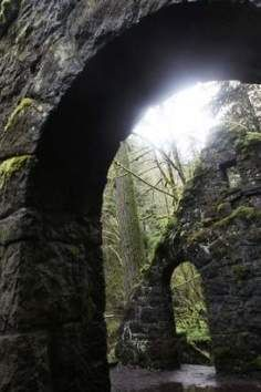 Macleay Park. This expansive hiking trail is a must visit location in Portland, Oregon.
