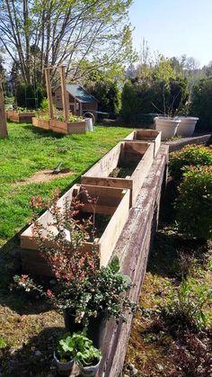 DIY Pallet #Garden Raised flower Bed Ideas | 99 Pallets