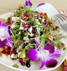 microgreens plating - Google Search