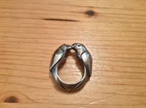Another view of the same ring...