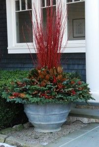 Stems of red twig Dogwood serve as a centerpiece