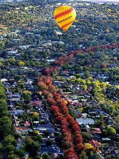 Balloon over Canberra in autumn