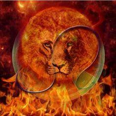 carolyn quan lion