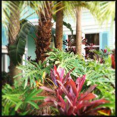 Wandering Disney's Old Key West Resort