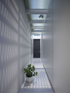 Fiberglass reinforced plastic - Casa Roji / airscape architects studio
