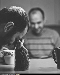 Coffee and kitten - cute photo