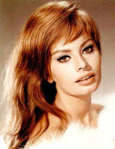 """billyhopkinson: """" Sophia Loren """""""
