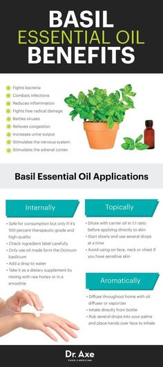 Basil Important Oil Fights Micro organism, Colds & Dangerous Odor - Dr. Axe. ** See even more by visiting the picture link