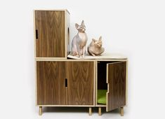 Newly Redesigned Modernist Cat: Mid-Century Modern Feline Furniture. Very cool!