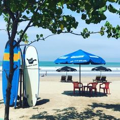 15 jours à Bali : de Ubud à Sanur