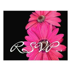 Discount DealsElegant Pink Daisies RSVP Wedding Response Card Custom Announcementyou will get best price offer lowest prices or diccount coupone