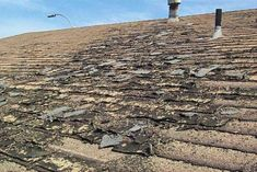 Ugly bad old worn roof shingles on house - More images if you click on the photo!