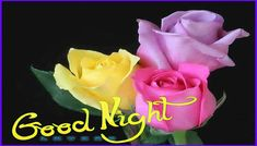 Good Night Messages For Sweetheart (Sweet Good Night Love Messages) Good Night Flowers, Good Night I Love You, Romantic Good Night, Good Night Love Images, Good Night Prayer, Good Night Friends, Good Night Blessings, Good Night Wishes, Good Night Sweet Dreams