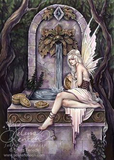 Fairy Wishing Well by Selina Fenech