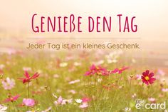Enjoy the day - Enjoy the day. Every day is a small gift. my-ecard.de ✔ Free e-cards & saying images ✔ Customi - Anne Taintor, Life Is Too Short Quotes, Quotes To Live By, Life Quotes, German Words, Morning Greetings Quotes, Quotes Deep Feelings, Life Pictures, E Cards