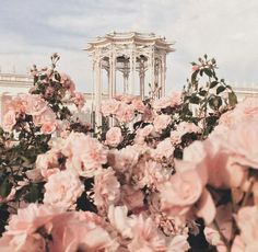 """Find and save images from the """"myth:Afrodita//Greek Gods Aes"""" collection by Chase (Lenannie) on We Heart It, your everyday app to get lost in what you love. Spring Aesthetic, Flower Aesthetic, Aesthetic Fashion, Aesthetic Pastel Pink, Rose Gold Aesthetic, Aphrodite Aesthetic, Princess Aesthetic, Queen Aesthetic, Crown Aesthetic"""