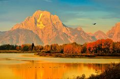 Autumn Dawn at Oxbow Bend by Greg Norrell from the #Tetons #nature #photography