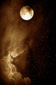 """""""Moonlight floods the whole sky from horizon to horizon; How much it can fill your room depends on its windows.""""  ― Rumi, The Essential Rumi"""