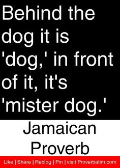 Jamaican Quotes Amusing Pinmarve Johnson On Jamaica Land We Love  Pinterest