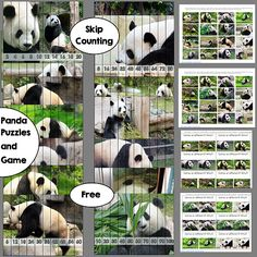 Panda Poses Puzzle and Game Freebie