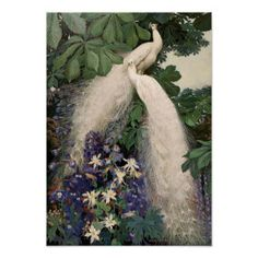 Vintage White Peacock Poster