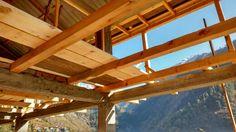 Building  house frames