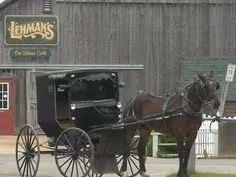 Pic i took in Amish Country <3