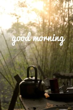 good morning card tea at the woods