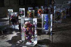 ©AMKK/Shiinoki みずみずしい植物や花。もし、その美しさをどこかに閉じ込めることができた […]