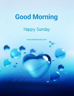Sunday Morning Images, Happy Sunday Pictures, Good Morning Friends Images, Good Morning Happy Sunday, Happy Sunday Friends, Happy Sunday Everyone, Good Morning Wishes, Happy Sunday Messages, Sunday Wishes
