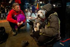Lifeline for dog owners who would rather sleep rough than be parted from pets Homeless People, Homeless Man, Vet Help, Mobile Vet, Manchester City Centre, Vet Clinics, Veterinary Care, Types Of Dogs, Fleas