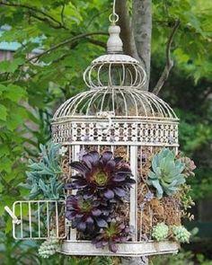 Ideas para el jardín | Cuidar de tus plantas es facilisimo.com
