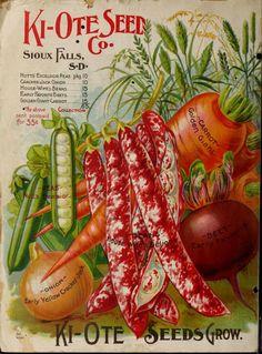 Ki-ote Seed Co. : 1898, catalogue page