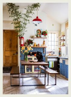 The Collingwood home of Poppy Lane and Scott Gibson.  (featuring Hona the cat!) Photo - Sean Fennessy, production – Lucy Feagins / The Design Files.