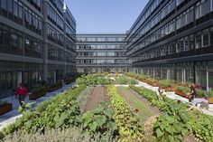 Empress Green, a 4,500-square foot urban farm located at Urby Staten Island, a 900-apartment complex in New York City.
