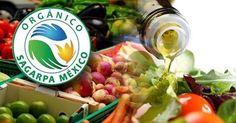 Qué es el sello Orgánico Sagarpa México y cómo obtenerlo