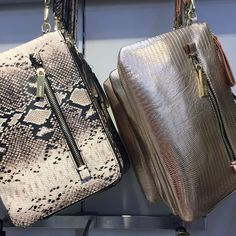 """PIXXY Fashion and Retail on Instagram: """"Eye-catching crossbody bags with glimmer and attitude ✨ @topshop #bag #clutch #snakeffect #rosegold #fauxleather #crossbody #snakeprint #metallic #accessories #silver #thegrovela #topshop #Pixxy"""""""