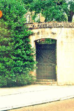 Charleston gates - 2014
