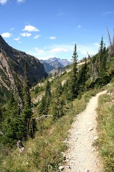 Hiking in Waterton Lakes National Park, Finding the Extraordinary in the Ordinary Waterton Lakes National Park, National Parks, Western Canada, Mount Rainier, Cool Places To Visit, Amazing Places, The Ordinary, The Good Place, Nostalgia