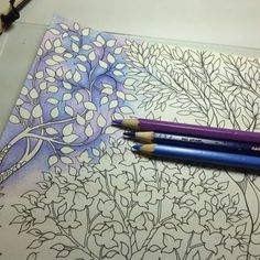 quick healthy breakfast ideas for diabetics recipes without food Secret Garden Coloring Book, Coloring Book Art, Colouring Pages, Adult Coloring Pages, Coloring Tips, Colored Pencil Tutorial, Colored Pencil Techniques, Zentangle, Enchanted Forest Coloring Book
