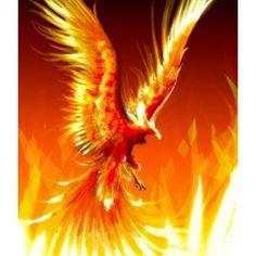 35 Best Phoenix Rising To Be Reborn Images Phoenix