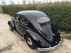 VW Kever Ovaal uit 1954