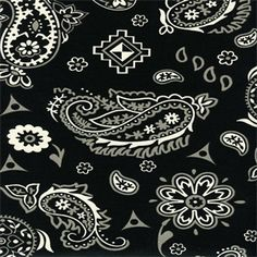 Yepes Panorama Tuxedo Paisley Drapery Fabric by Swavelle Mill Creek