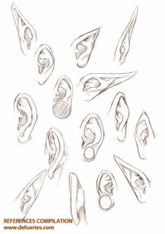 Ears - Character Design references internet recopilation www.defuertes.com    #artwork #arte #art #illustrator #illustration #ilustracion #draw #drawing #dibujar #dibujo #sketch #pencil #sketchbook #spanishartist #smile #defuertes #artsblog #artist #artinfo #artcall #artinfo #artlovers #artoftheday #artwork #artshow #color #creative #fineart #follow #yourbrand #creative #inspirations #oilpaintings #originalartwork #paint #painting #photography #photoofday #photooftheweek #photos #portrait…