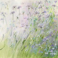 White daisies by Sue Fenlon