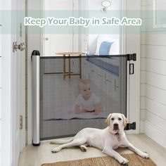 Baby Safety Gate >>> (paid link) Click image to review more details.